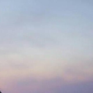 celine - 人気✨国内発送✨Celine❀セリーフ❀さいふ 小銭入れ エレガント 美品✨