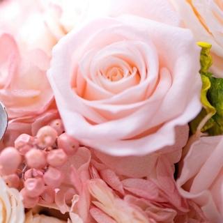 Cartier - カルティエ 0.40ct VS1 ソリテール ダイヤ モンド リング 鑑定書