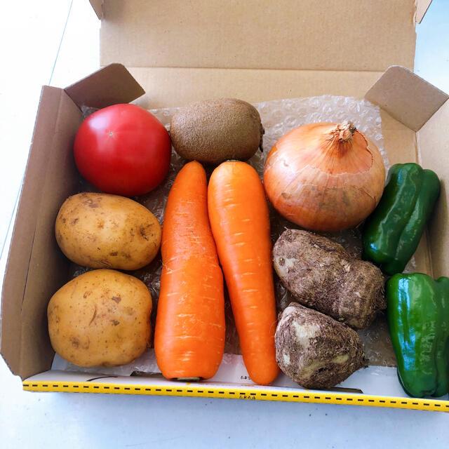 九州産野菜ミニセット 食品/飲料/酒の食品(野菜)の商品写真