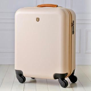 イデアインターナショナル(I.D.E.A international)のBRUNO milesto ハードキャリーケース 35L キャビンサイズ 廃盤品(スーツケース/キャリーバッグ)