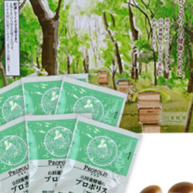 山田養蜂場(ヤマダヨウホウジョウ)のプロポリス300 6包 コスメ/美容のキット/セット(サンプル/トライアルキット)の商品写真