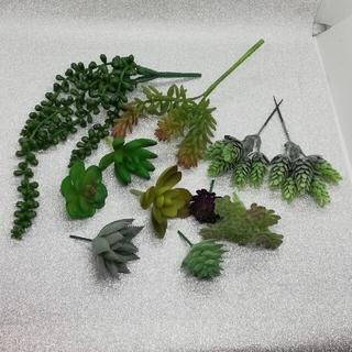 多肉植物+グリーンネックレス フェイク(その他)