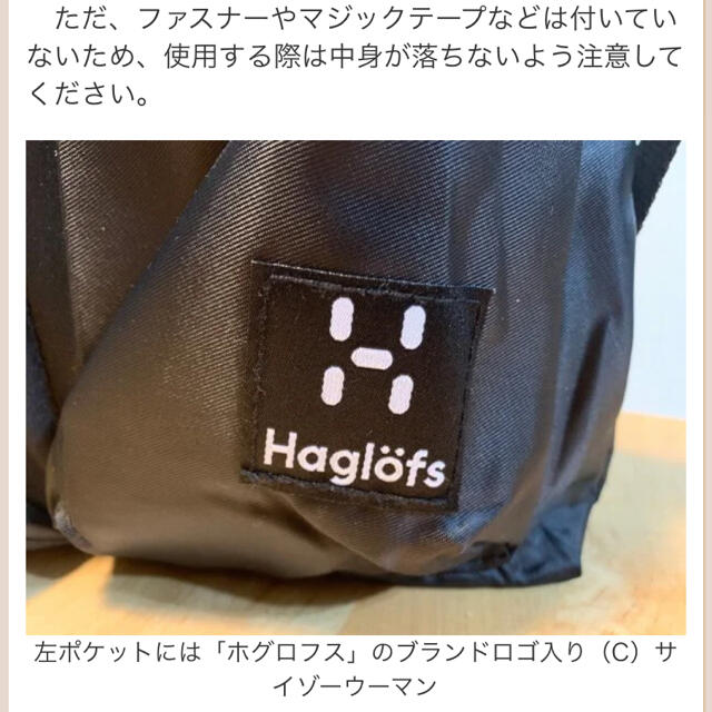Haglofs(ホグロフス)のホグロフス 3way ミニヘルメットバッグです。 メンズのバッグ(ショルダーバッグ)の商品写真