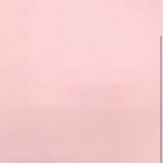 CHANEL - シャネル素敵2way(両面可能)ホワイト白×シルバーネックレス