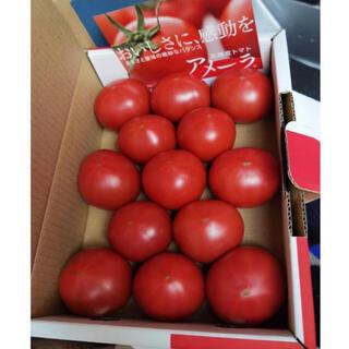 アメーラ高糖分フルーツトマト 1ケース(フルーツ)