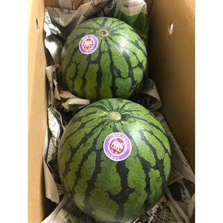 熊本県スイカ2玉入り 箱込み約10kg(フルーツ)