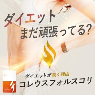 フォースコリーの代用に コレウスフォルスコリ 1ヶ月分 最強燃焼系ダイエット