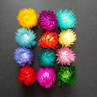 シルバーデイジー ヘッド 12色 ドライフラワー ハーバリウム花材(ドライフラワー)