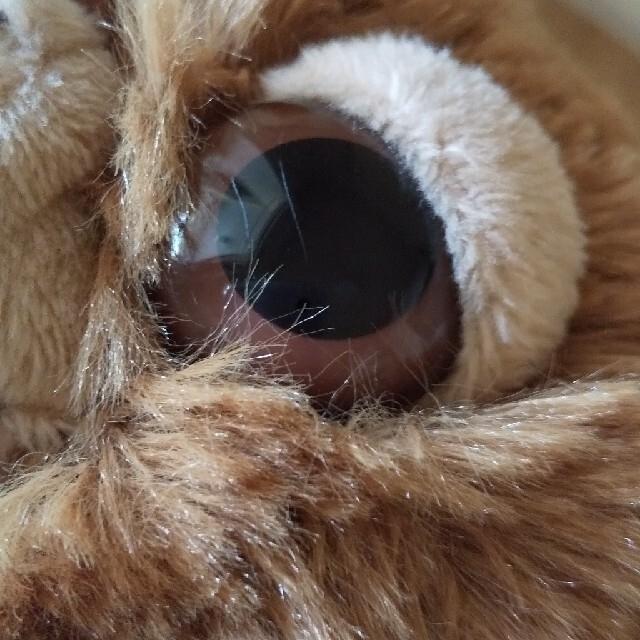 グレムリン NICI ギズモ ぬいぐるみ エンタメ/ホビーのおもちゃ/ぬいぐるみ(ぬいぐるみ)の商品写真