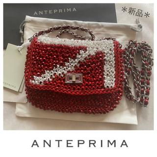 ANTEPRIMA - ⭐️期間限定‼︎⭐️新品アンテプリマ 限定ルッケット ワイヤーバッグ RIO💫
