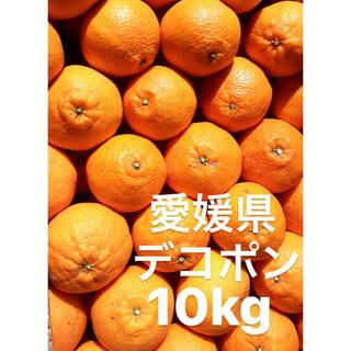 ●愛媛県 デコポン 10kg(フルーツ)