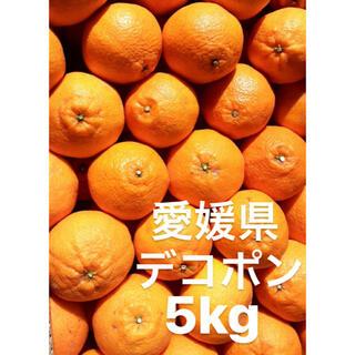 ●愛媛県 デコポン 5kg(フルーツ)