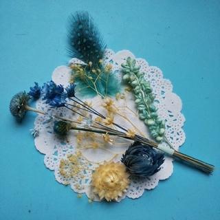 ♪おまとめ割引あり♪アロマワックス向け 小さめ花材セット (ブルー系ミックス)(ドライフラワー)