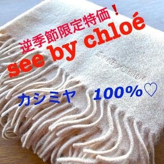 SEE BY CHLOE - SeeByChloéシーバイクロエ カシミヤ100%♡フワッフワストールマフラー