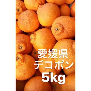 ○愛媛県 デコポン 5kg(フルーツ)