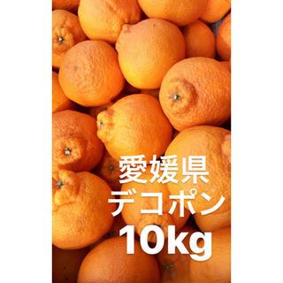 ○愛媛県 デコポン 10kg(フルーツ)