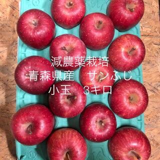 減農薬栽培*青森県産サンふじ3キロ小玉14個入り(フルーツ)