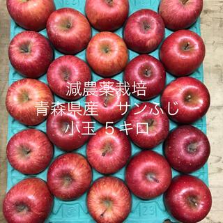 減農薬栽培*青森県産サンふじ小玉5キロ23個入り(フルーツ)