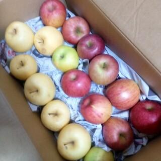 岩手県産 ご家庭用 りんご詰合せ 箱込み 8〜9kg(フルーツ)