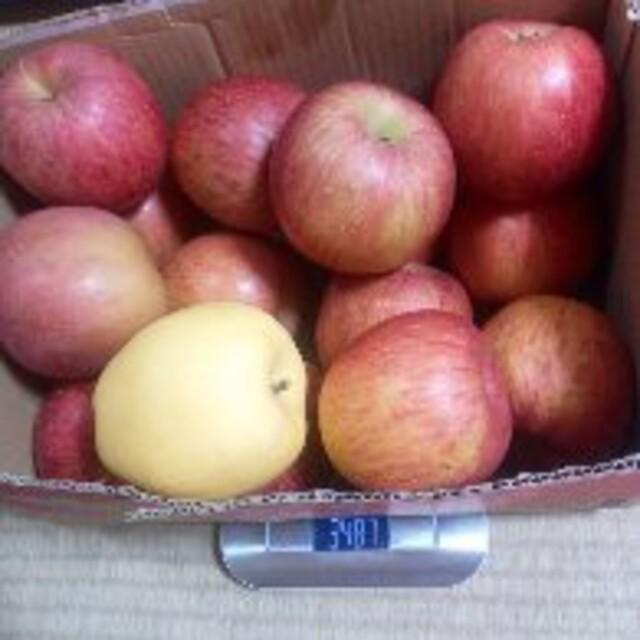 岩手県産 ご家庭用 りんご詰合せ 箱込み8〜9kg 食品/飲料/酒の食品(フルーツ)の商品写真