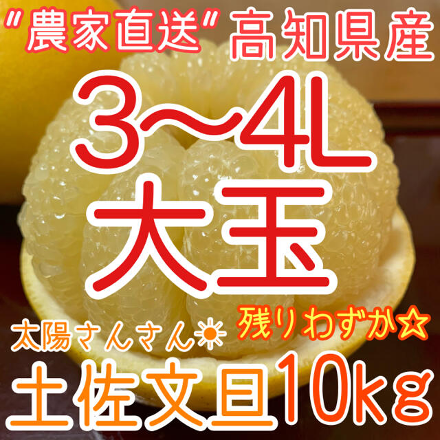 高知県産 土佐文旦 ぶんたん 10kg 大玉3~4L 食品/飲料/酒の食品(フルーツ)の商品写真