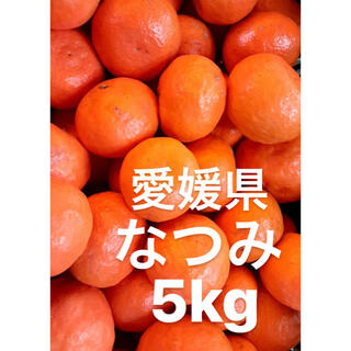 愛媛県 なつみ 5kg(フルーツ)