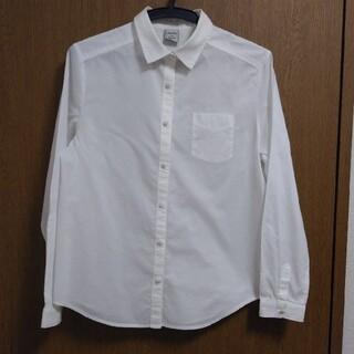 シャンブルドゥシャーム(chambre de charme)のchambre de charme 綿100%長袖シャツ(シャツ/ブラウス(長袖/七分))