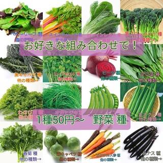 なな様専用(野菜)