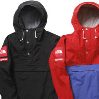 Supreme - 国内正規‼️10SS SUPREME×THE NORTH FACE‼️