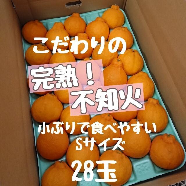 完熟!不知火 小玉秀品 28玉 食品/飲料/酒の食品(フルーツ)の商品写真