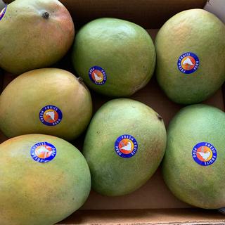 コストコ、アップルマンゴー、ペール産7個入り4キロ(フルーツ)