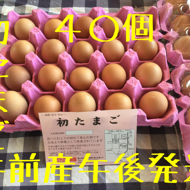40個 初産み たまご掛けご飯用 生2週間 加熱1カ月 北海道沖縄追加送料 食品/飲料/酒の食品(野菜)の商品写真