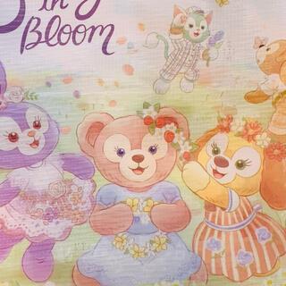 Disney - ディズニーシー 本日分