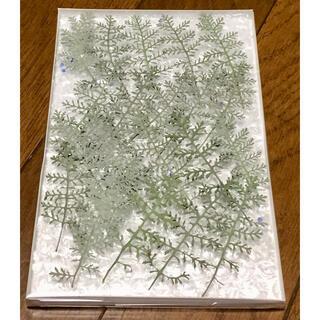 27   銀の紫陽花 春の100円お値引きセールは20日まで‼️(ドライフラワー)