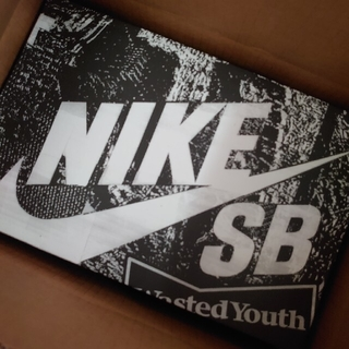 NIKE - Wasted Youth × Nike SB Dunk Low