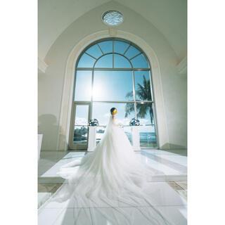 タカミ(TAKAMI)のタカミブライダル ウェディングドレス ルアナ(ウェディングドレス)