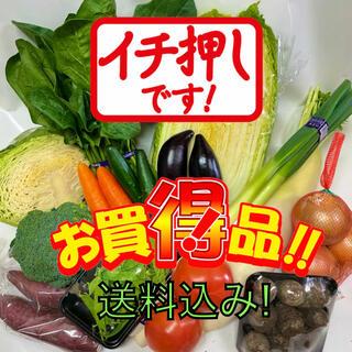 野菜好きの方へ❗️新鮮野菜詰め合わせ100サイズ箱満タン❗️