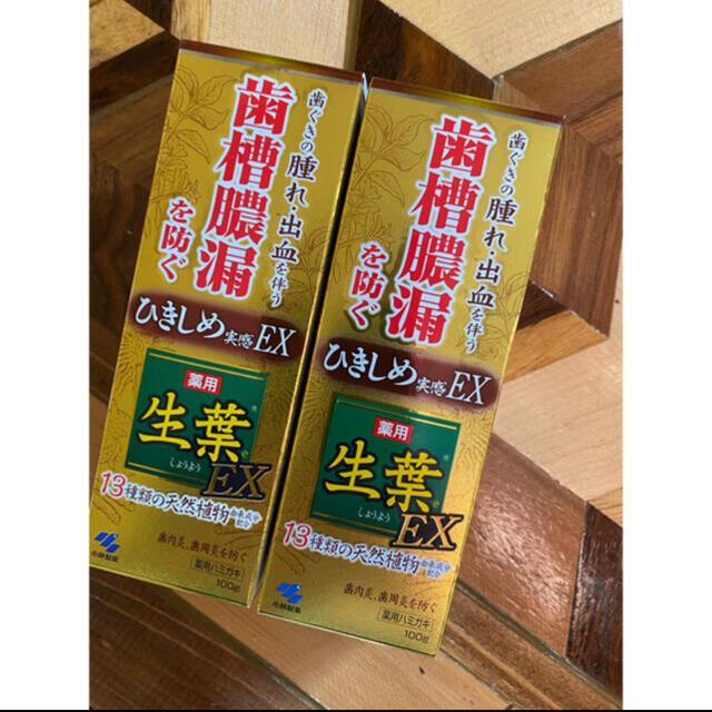 小林製薬(コバヤシセイヤク)の生葉 歯槽膿漏歯磨き粉  コスメ/美容のオーラルケア(歯磨き粉)の商品写真