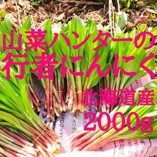 ヨシ様専用出品 北海道函館産の行者にんにく2000g(野菜)