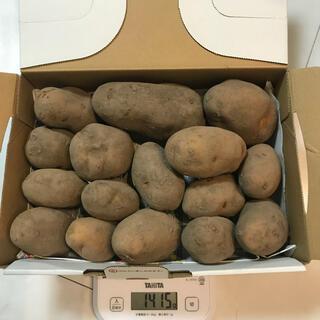 北海道産熟成インカのめざめ 1.5k
