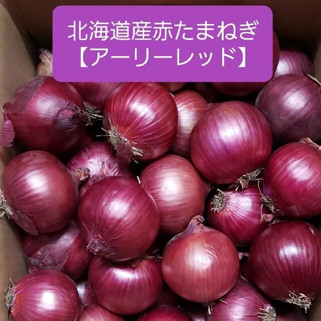 北海道産 赤玉ねぎ【アーリーレッド】 Lサイズ 約5キロ  食品/飲料/酒の食品(野菜)の商品写真