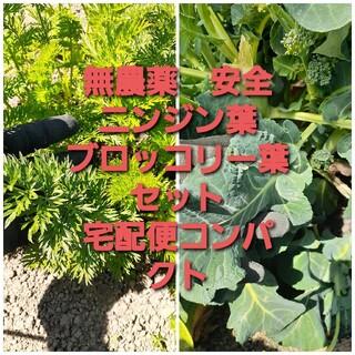 無農薬で安全 ニンジン葉 ブロッコリー葉セット(野菜)