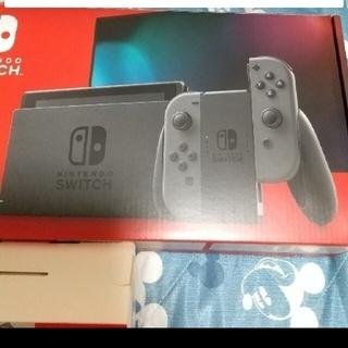 Nintendo Switch - Nintendo Switch 本体 グレー 強化版 美中古
