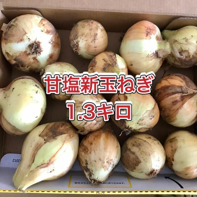 【鹿児島産】甘塩新玉ねぎ箱込み1.3キロ^_^ 食品/飲料/酒の食品(野菜)の商品写真