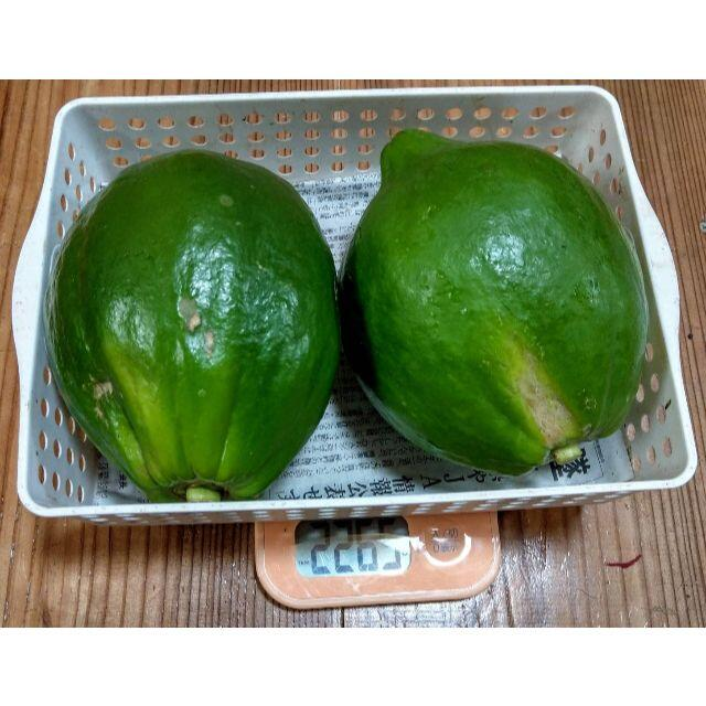 沖縄No.1健康野菜!! アンチエイジングに! 青パパイヤ 2kg 食品/飲料/酒の食品(野菜)の商品写真