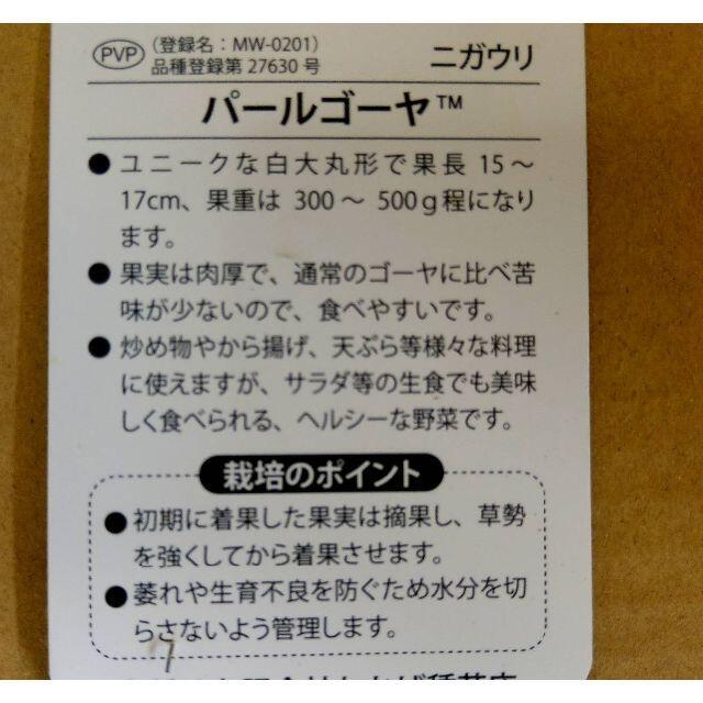 沖縄本島産 パールゴーヤーの苗! 2鉢セット♪ 食品/飲料/酒の食品(野菜)の商品写真