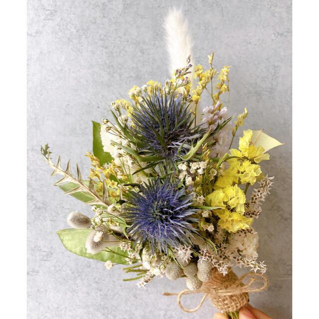 ドライフラワー Blue&yellow White スワッグ ブーケ ハンドメイドのフラワー/ガーデン(ドライフラワー)の商品写真