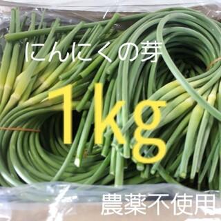 にんにくの芽1キロ(コンパクト便)時間指定可能