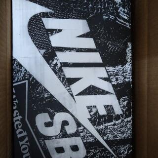ナイキ(NIKE)のWasted Youth × NIKE SB DUNK LOW SP BOX(スニーカー)