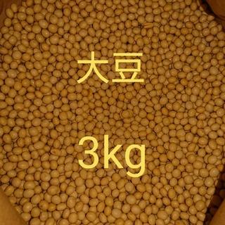 自家栽培  大豆 ( 里のほほえみ ) 3kg 家庭用(野菜)